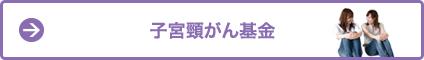 shikyu.fw