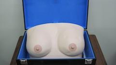 乳房触診モデル